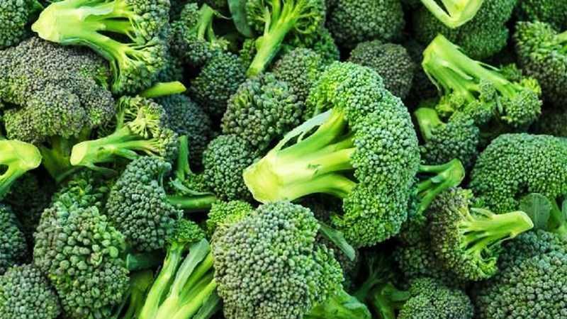 Lợi ích của bông cải xanh đối với não bộ