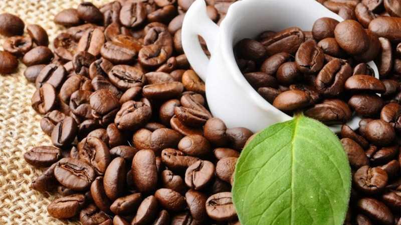 Lợi ích của cà phê đối với não bộ