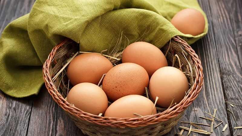 Lợi ích của trứng đối với não bộ