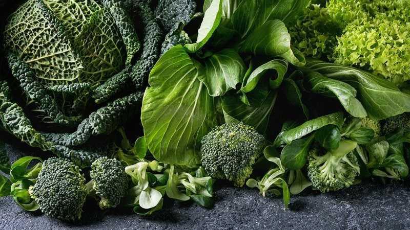 Các loại rau củ có màu sẫm giúp tăng kích thước vòng 1