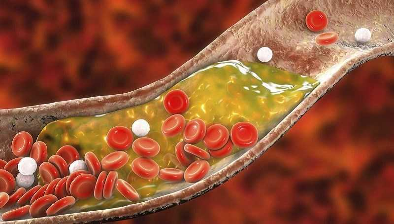 Hạt hướng dương tăng cường mức cholesterol lành mạnh