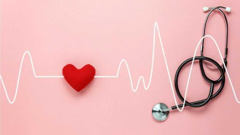 Bạch đậu khấu giúp tăng cư�ng sức kh�e tim mạch