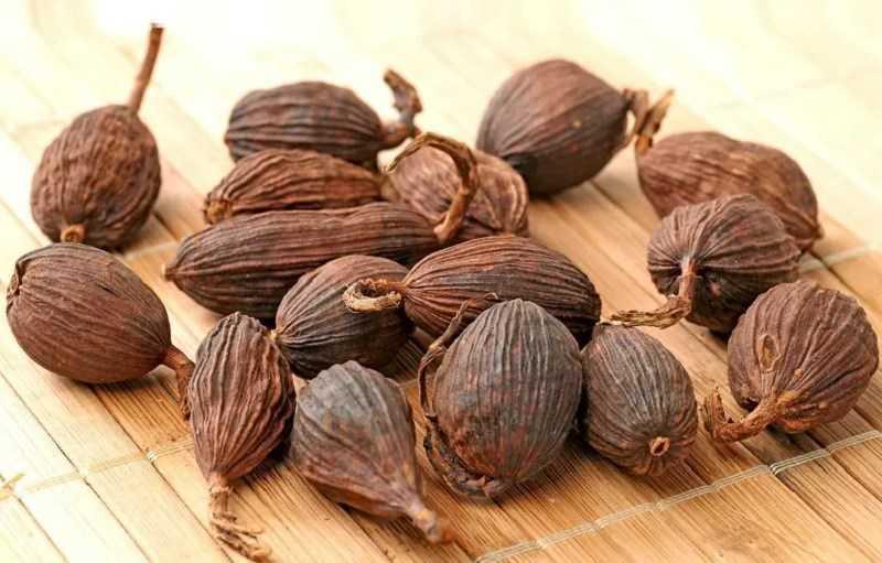 Bạch đậu khấu dùng trong ẩm thực