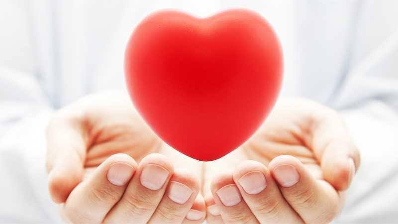 Quả mâm cơm cháy nếp giúp cải thiện sức khỏe tim mạch