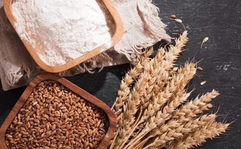 Dị ứng với gluten (lúa mì)