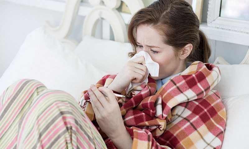 Kinh giới hỗ trợ điều trị cảm cúm