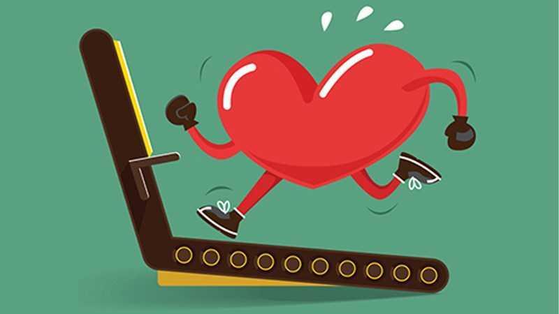Rau mầm giúp cải thiện sức khỏe tim mạch