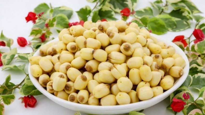 Cách chọn mua và bảo quản hạt sen tươi và khô