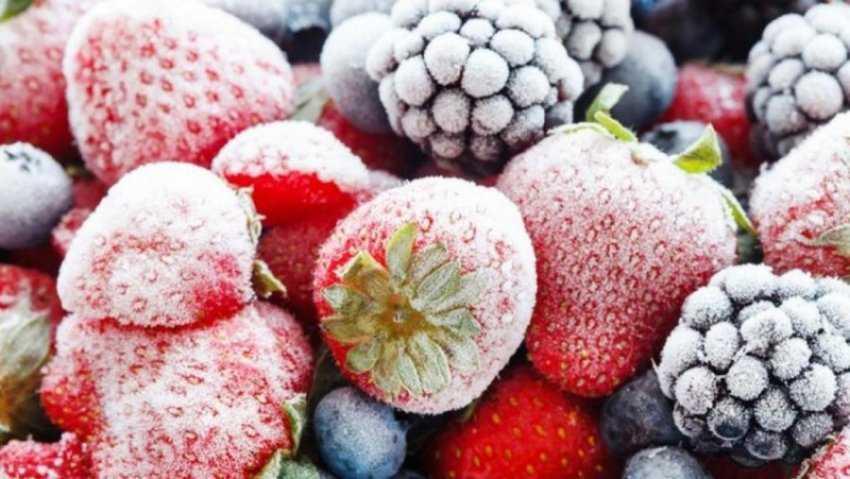 Freezing là gì?  Làm thế nào để đông lạnh thực phẩm đúng cách?