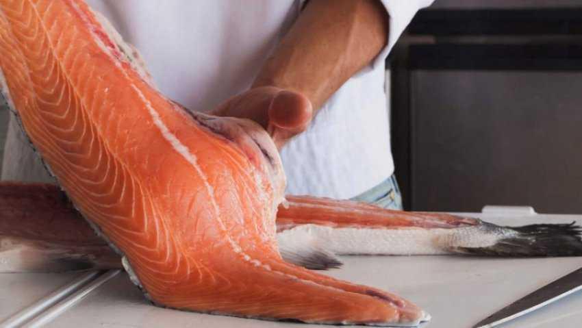 Phi lê là gì?  Thức ăn phi lê phổ biến