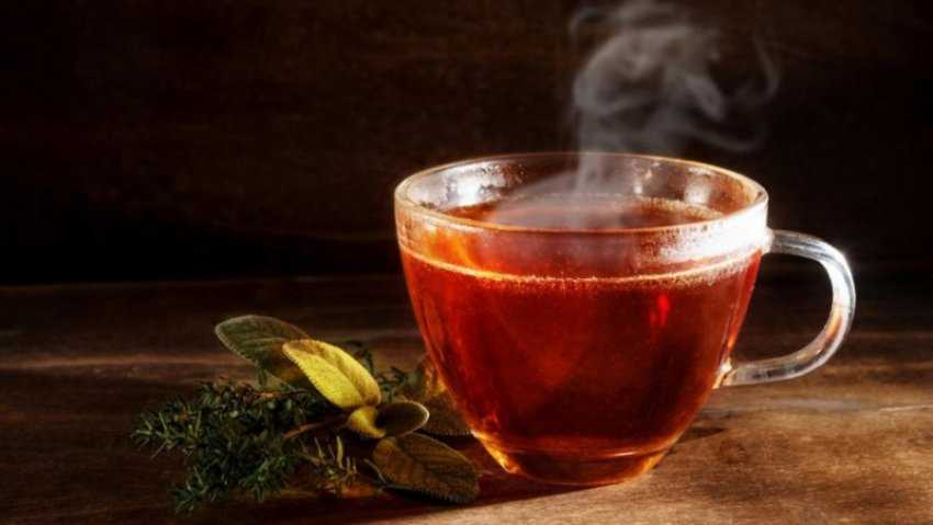 Trà là gì?  Các loại trà ngon phổ biến