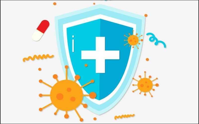 Hỗ trợ hệ thống miễn dịch