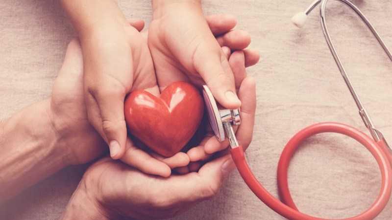 Đậu nam việt quất giúp duy trì huyết áp khỏe mạnh
