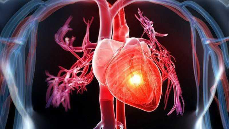 Các loại đậu giúp bảo vệ sức khỏe tim mạch