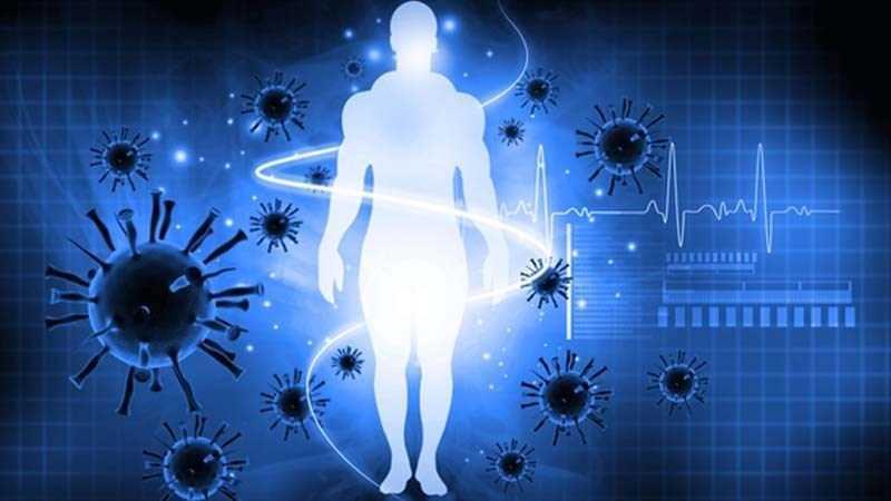 Quất giúp tăng cường khả năng miễn dịch