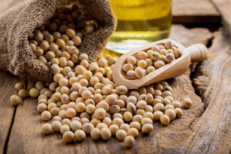 Đậu nành là nguyên liệu để sản xuất dầu đậu nành