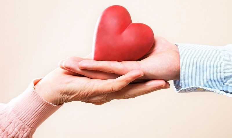 đậu nành bảo vệ tim mạch