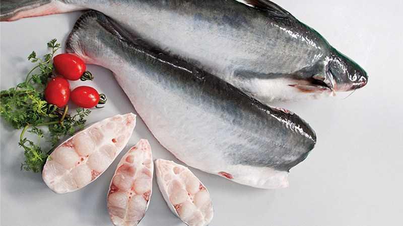 Cá basa là cá thịt trắng