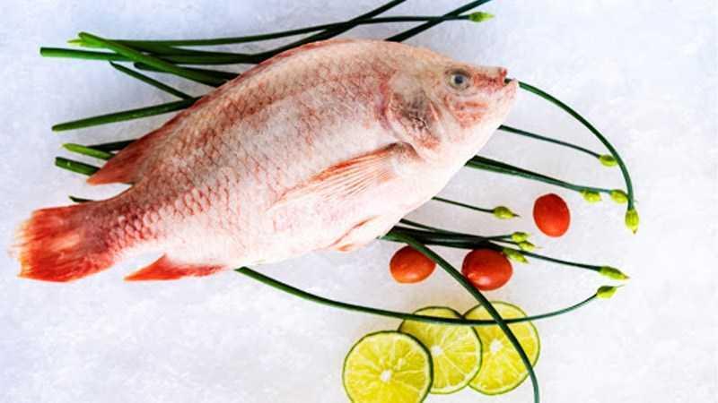 Cá rô phi là cá thịt trắng