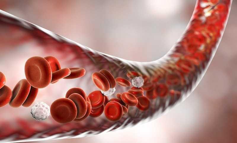 �i�u trị thiếu máu