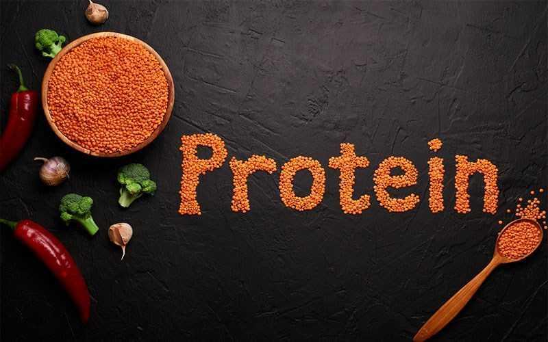Giàu protein thực vật - thích hợp cho người ăn chay