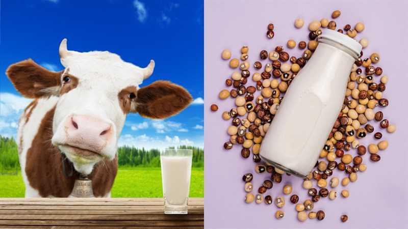 So sánh một số loại sữa hạt và sữa bò