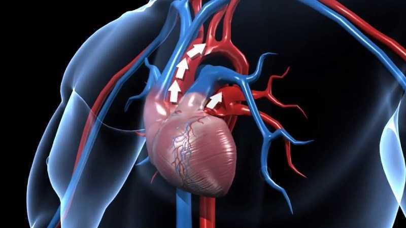 Cải thiện sức kh�e tim mạch