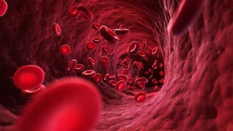 Giảm các triệu chứng thiếu máu