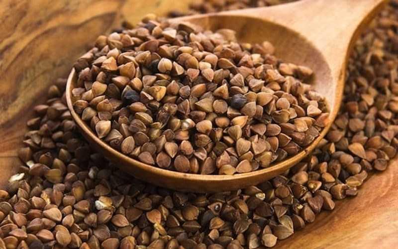 Lúa mạch đen là gì?