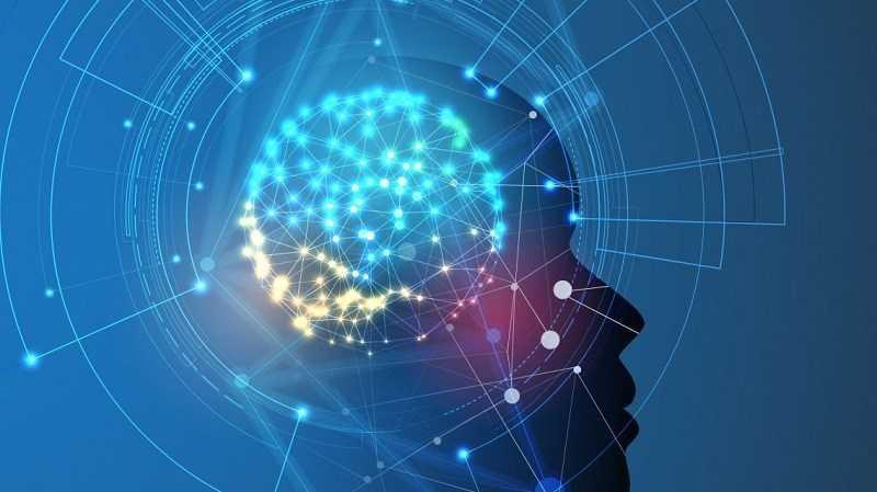 Cải thiện trí nhớ và chức năng não