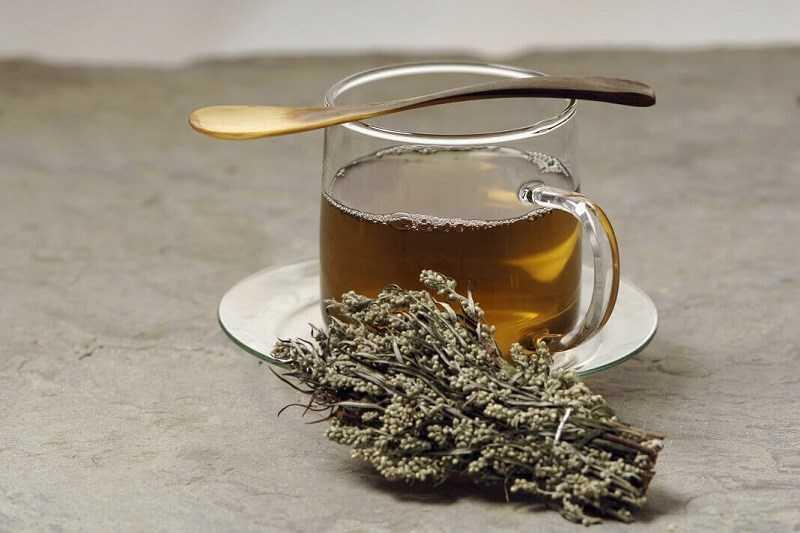 Cách pha trà ngải cứu