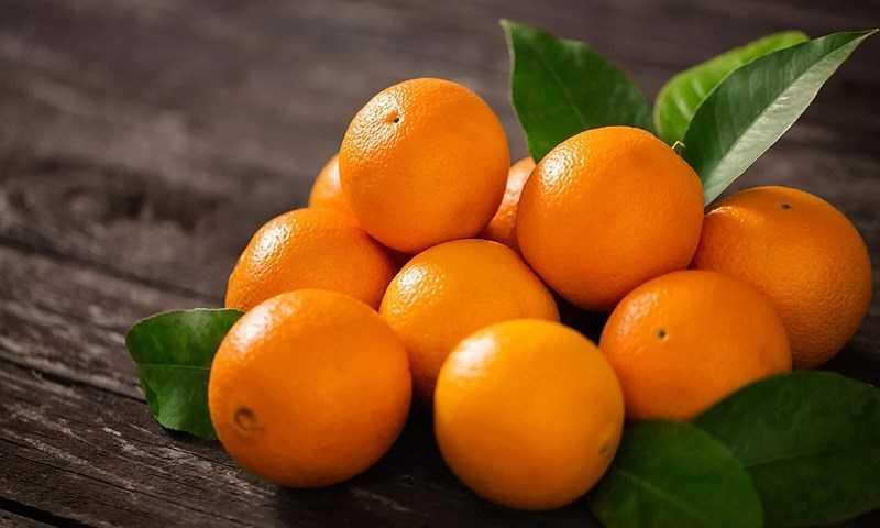trái cam