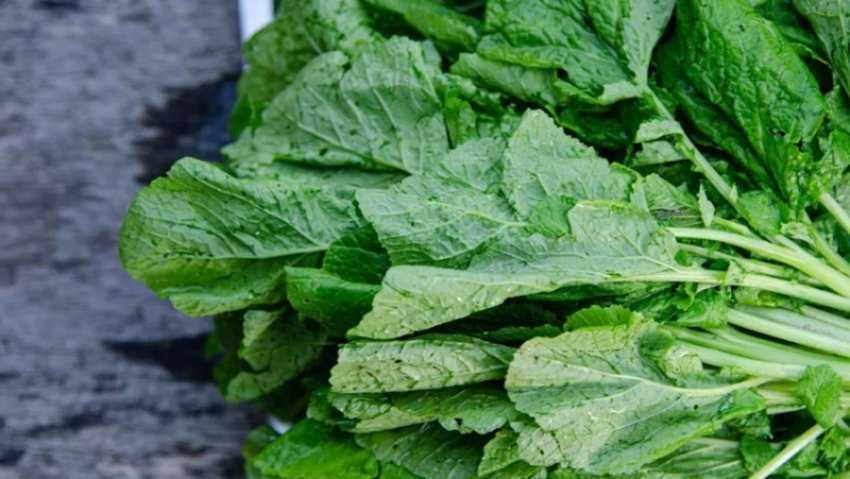 Tác dụng của bông cải xanh (cải bẹ xanh)