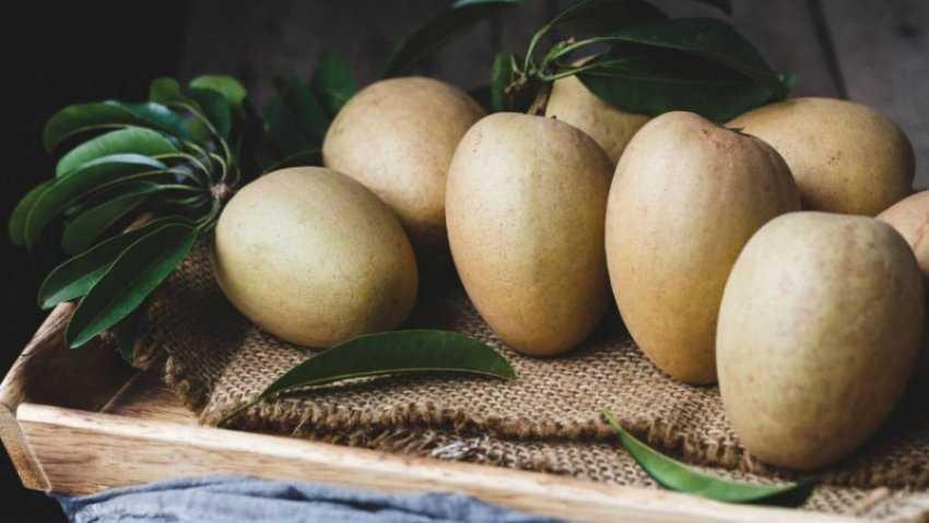 10 tác dụng của quả hồng xiêm (sapoche)