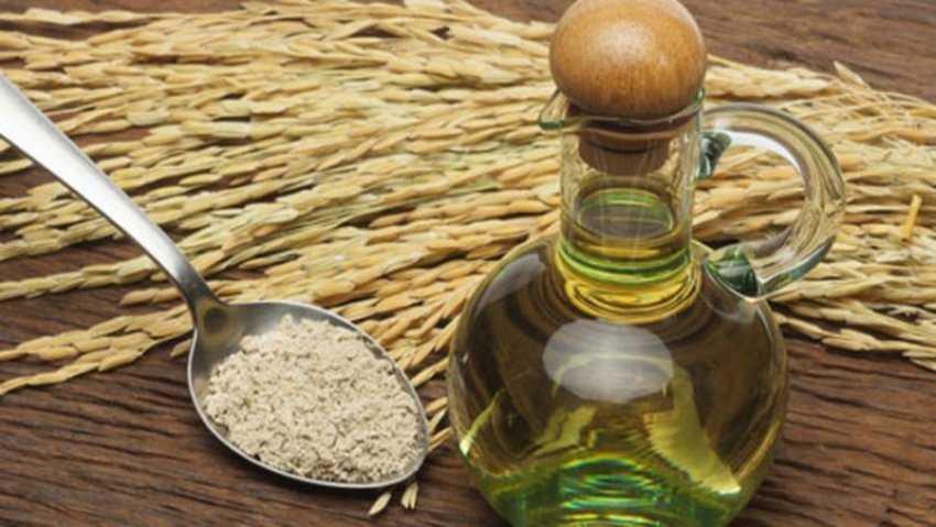 Dầu gạo là gì?  Tác dụng của dầu gạo